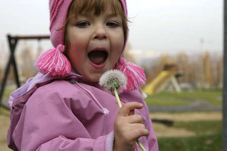 Child trying to blow a dandelion. Stock Photo - 756953