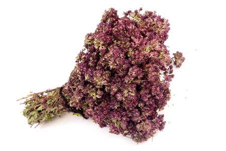 creeping: Dried Creeping thyme for tea