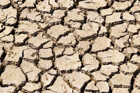 evaporarse: Relevaci�n de la sequ�a. Textura de tierra seca.