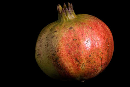 punica granatum: Pomegranate Stock Photo