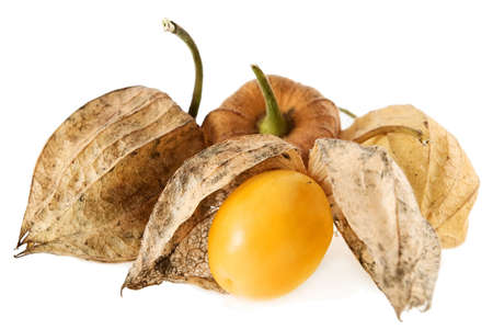 caped: Physalis fruit isolated on white.