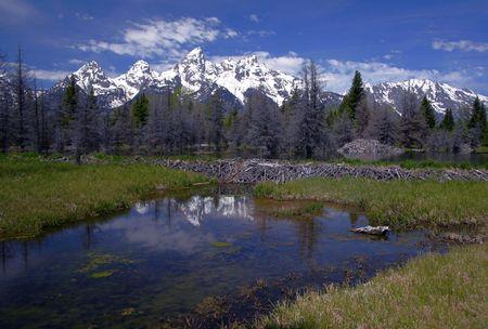 teton: Gamma Di Teton, Wyoming