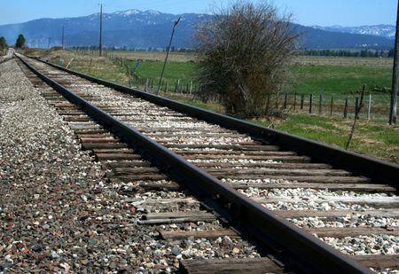 durable: Train Tracks