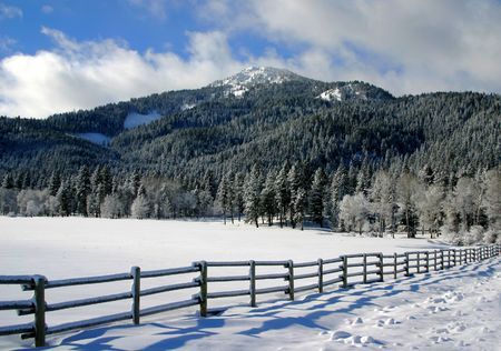 fenceline: Valley County Idaho Stock Photo