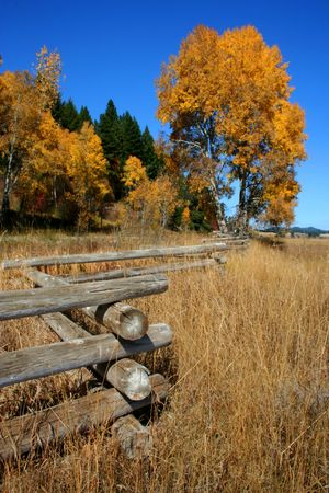 fenceline: Autumn In Valley County Idaho Stock Photo