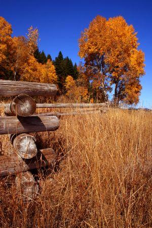 Autumn In Valley County Idaho Stock Photo - 706904