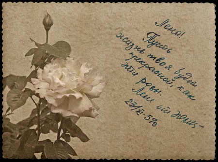 Greeting card with rose. Russian language Stock Photo - 18511578