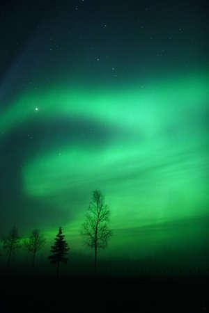 Aurora Borealis near Fairbanks, AK photo