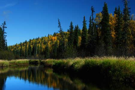 grayling: Perfect fishing spot Stock Photo