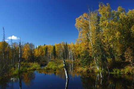 Calm fall day in Alaska photo