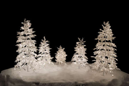 isolation: 5 isolated christmas trees with lights on snow basement. Isolation color - black Stock Photo
