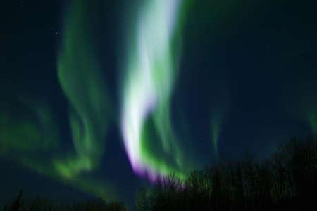 ionosphere: Colors of northern lights (aurora borealis) over trees Stock Photo