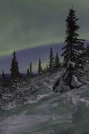 nuit hiver: Paysage d'hiver de nuit
