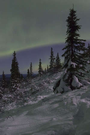 ionosphere: Winter night landscape
