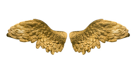 raster version of golden wings photo