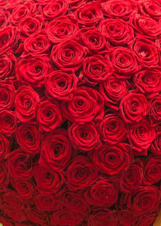 Rosas rojas patrón de fondo natural