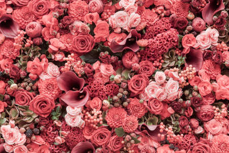 Résumé de fond de fleurs Close-up.