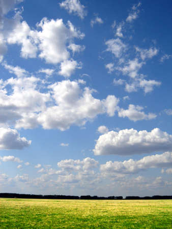 horison: green field and horison and blue sky Stock Photo