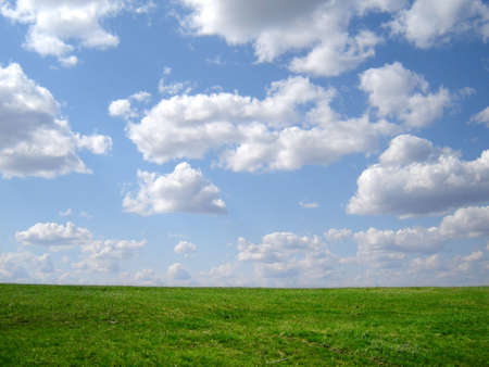 horison: green grass and blue sky and horison Stock Photo