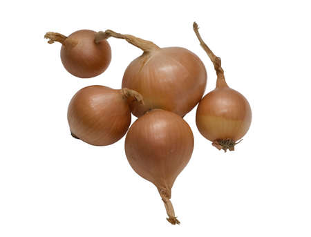 onions isoalated on a white background Stock Photo