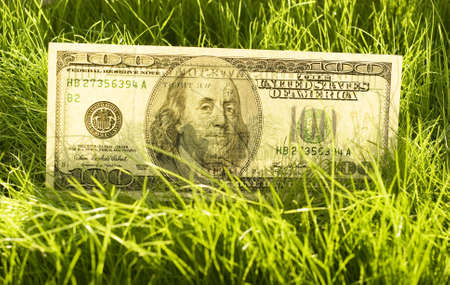 one hundred dollars: one hundred dollars in the grass Stock Photo