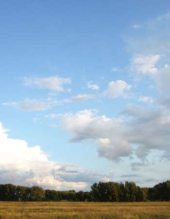 lea: dark blue sky and horizon Stock Photo