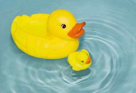 pato de hule: patos de goma amarillo flotando sobre el agua
