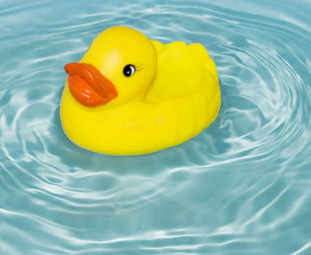yellow rubber duck floatin on water photo