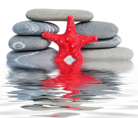 bridge and starfish reflected in water photo