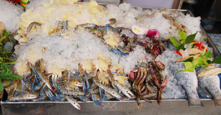 fresh seafood in ice photo