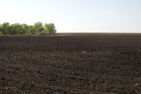 ploughed field and blue sky photo
