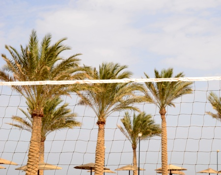 beach volleyball net photo