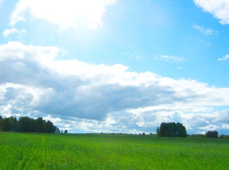 field, trees and beauty cloudscape photo