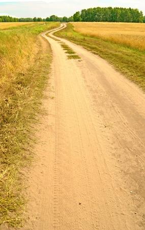 road in field Stock Photo - 15497427