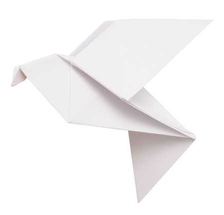 origami dove isolated on white photo