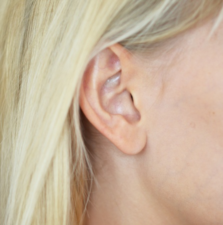 close up of woman ear photo