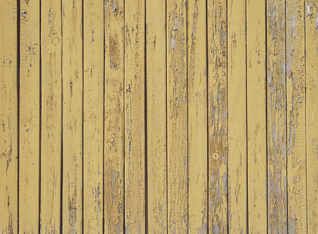wooden texture great as background photo