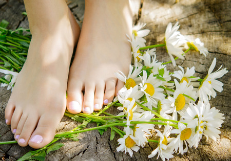 foot spa: close up of woman feet with camomiles Stock Photo