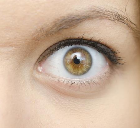 beaty: close up of beaty woman eye