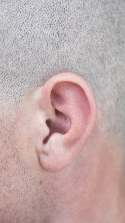 close up of male ear photo