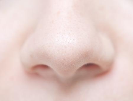 nose close up: close up of woman nose Stock Photo