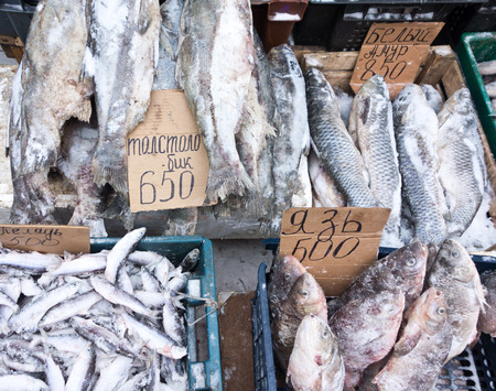 frozen fish: raw frozen fish on a local market Stock Photo