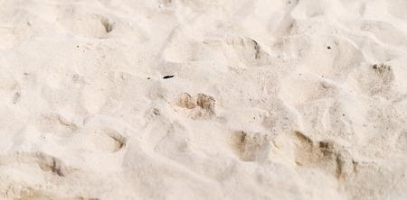 sand beach: beach sand
