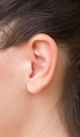human ear: close up of woman ear