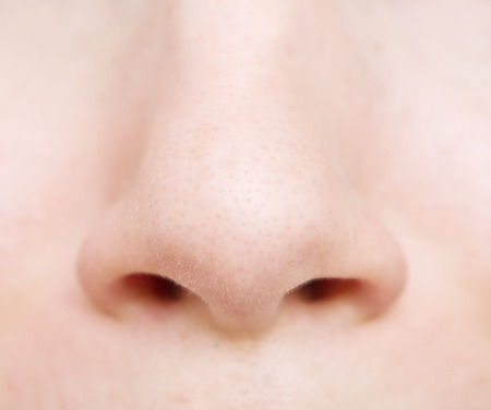 nose close up: close up of woman nose Stock Photo