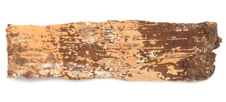 birchen: birch bark isolated on white background
