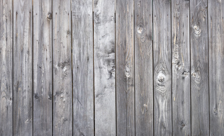 background grunge: great wooden texture Stock Photo