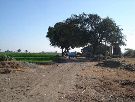 Indian village scene.