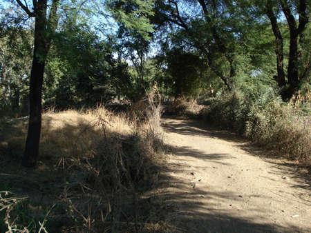 A village path