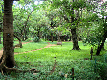 Bangalore Park Stock Photo - 6634366